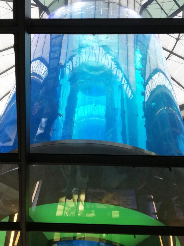 Akwarium w Hotelu Radisson Blu
